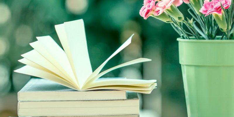 Mare o Montagna: consigli di lettura per ogni vacanza